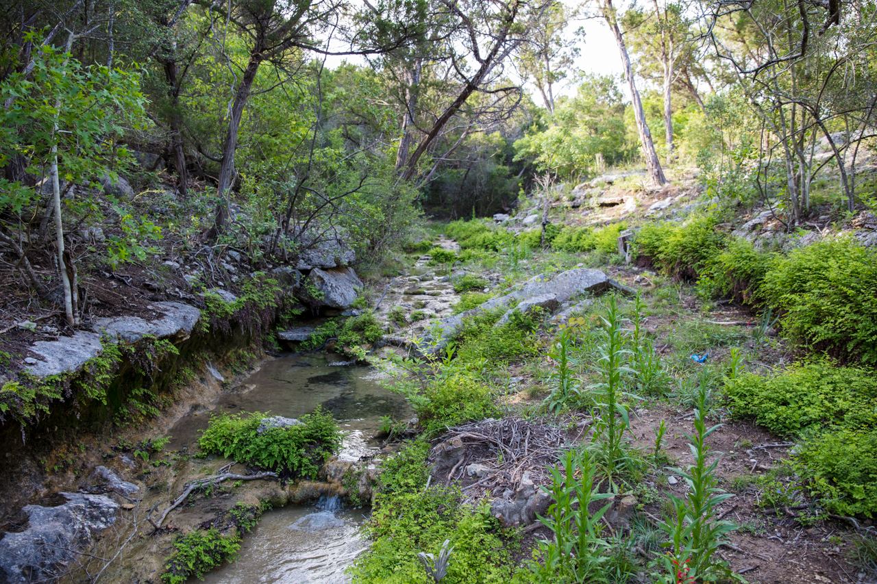 Hiking trail behind the home leads to a creek with year-round pools